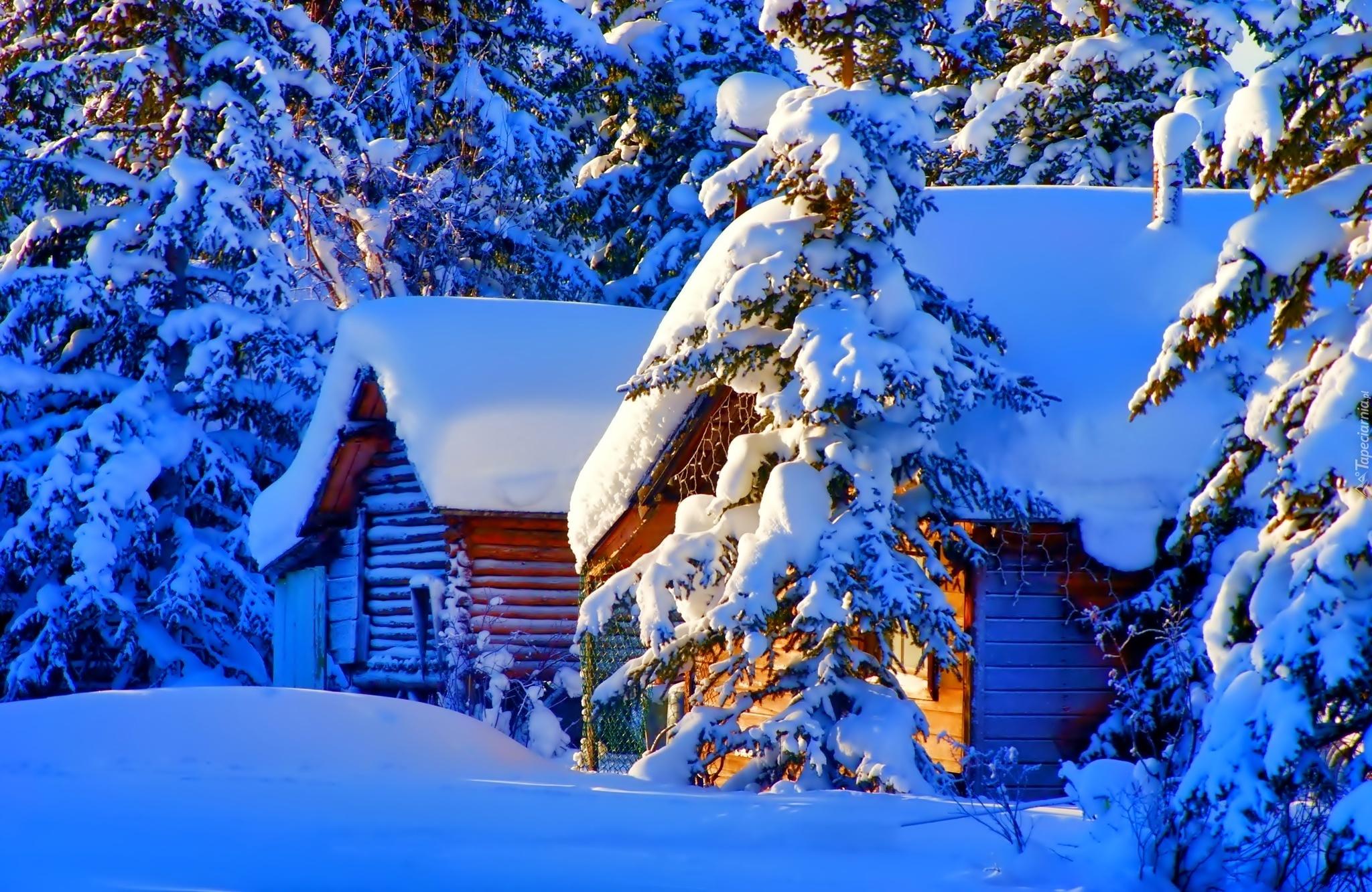 156993_domki_las_snieg_zima.jpg