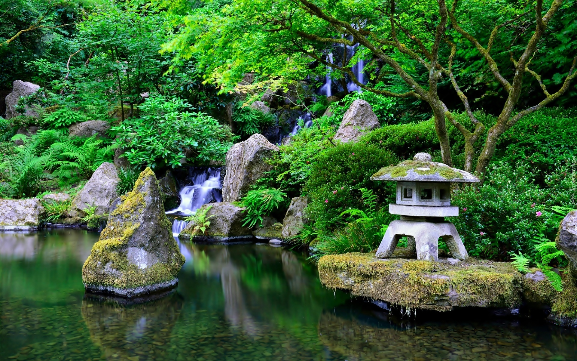 Portland Japanese Garden  2018 All You Need to Know