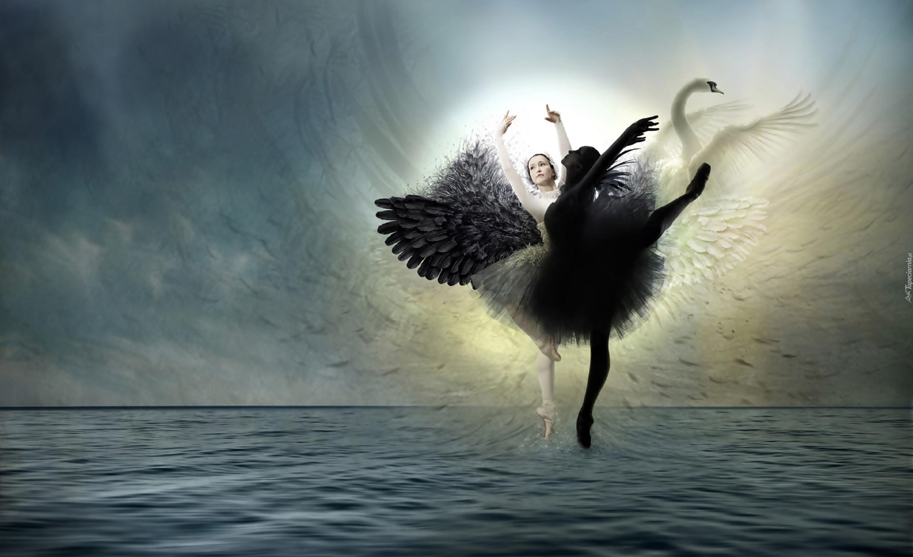 swan lake black single women (in the film black swan,  swan lake is generally  german singer jeanette biedermann uses the swan lake melody structure for her 2001 single release.