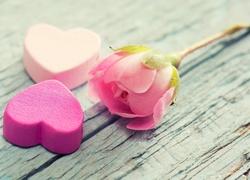 Walentynki, Serca, Serduszka, Kwiat, R�a