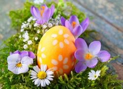 Wielkanoc, Pisanka, Kwiaty, Krokusy, Bratek, Stokrotka, Gipsówka, Mech, Dekoracja