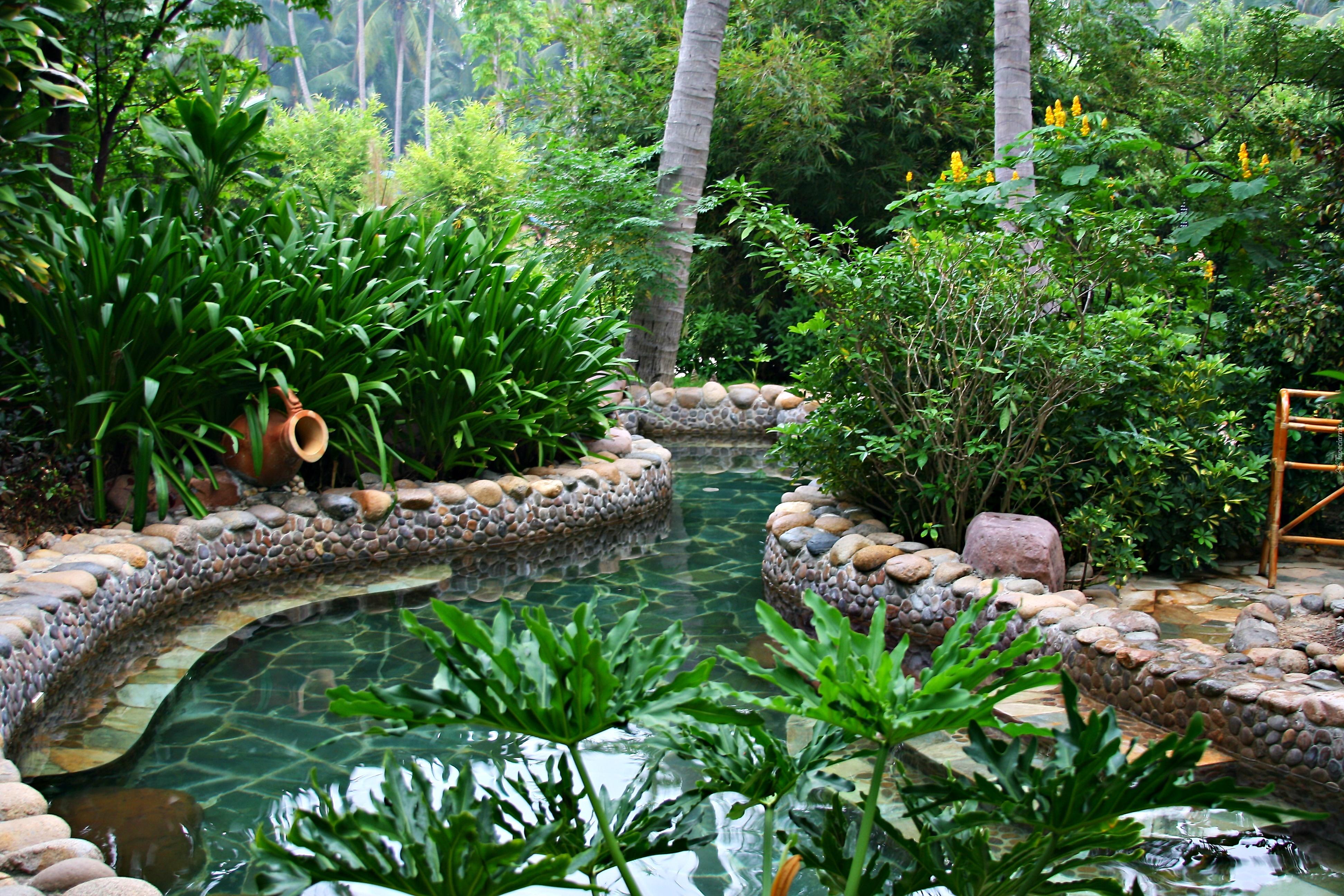 Ogród, Wodne, Oczko, Krzewy, Kwiaty, Drzewa